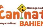 Sexta edición de la Caninata Bahiense