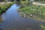 Limpieza del arroyo Napostá: el municipio ofreció detalles de los trabajos previstos