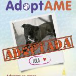 Lola (Adoptada)
