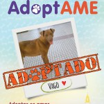 Vago (Adoptado)